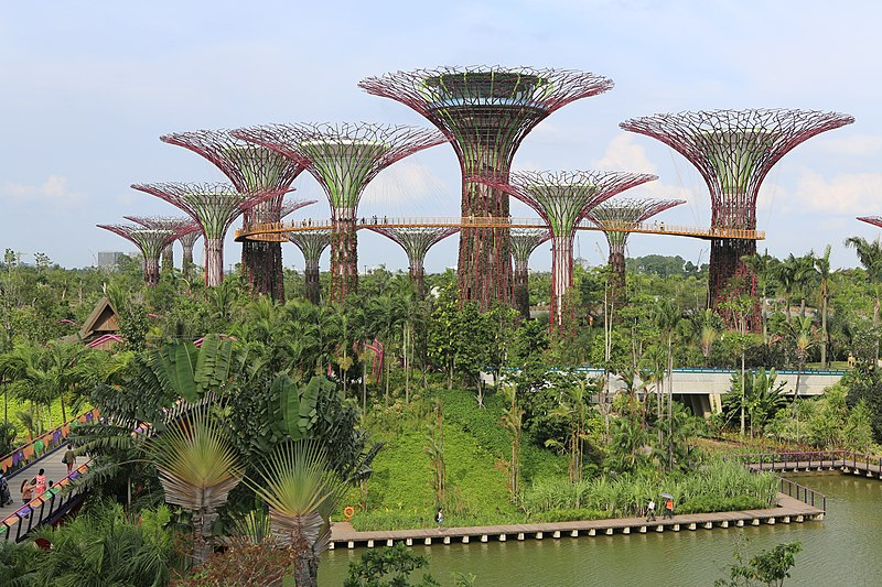 800px-Supertree_Grove,_Gardens_by_the_Bay,_Singapore_-_20120712-02.jpg